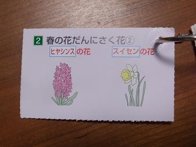 DSCF0377.jpg
