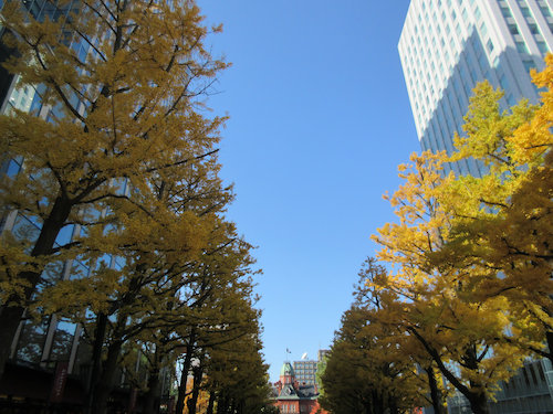 17.10.27.つれづれ1