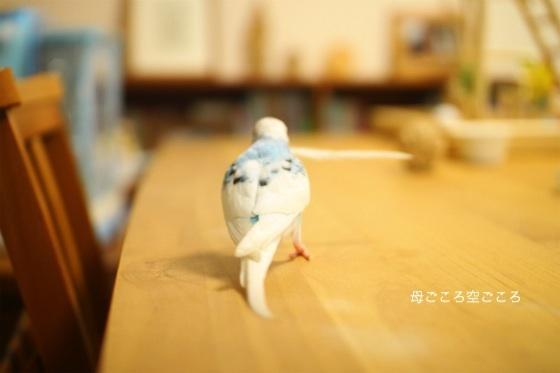 sIMG_2175-p-suke.jpg