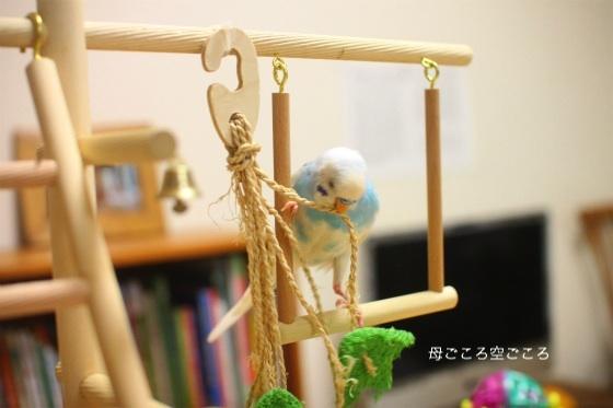 sIMG_2278-p-suke.jpg
