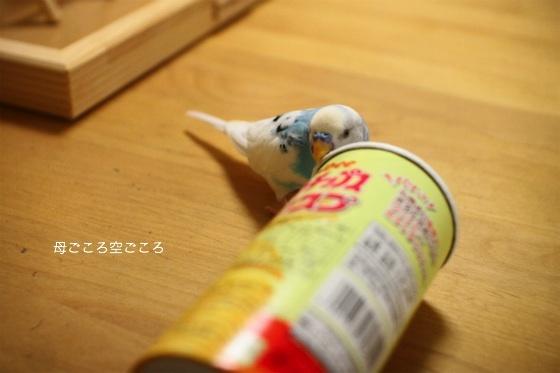 sIMG_2663.jpg