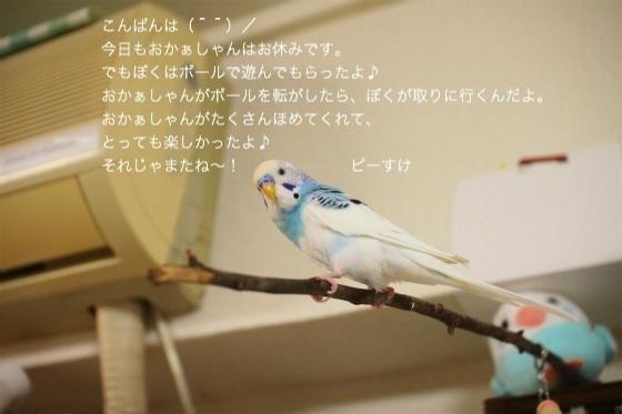 sIMG_2757.jpg