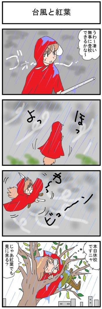 台風と紅葉