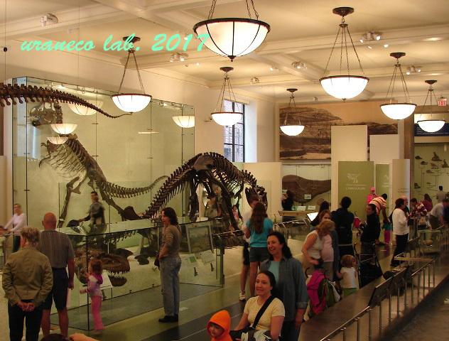 10月5日自然史博物館3
