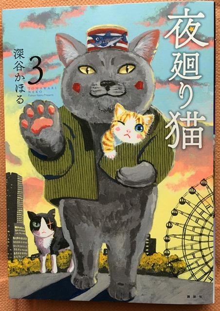 11月27日夜廻り猫