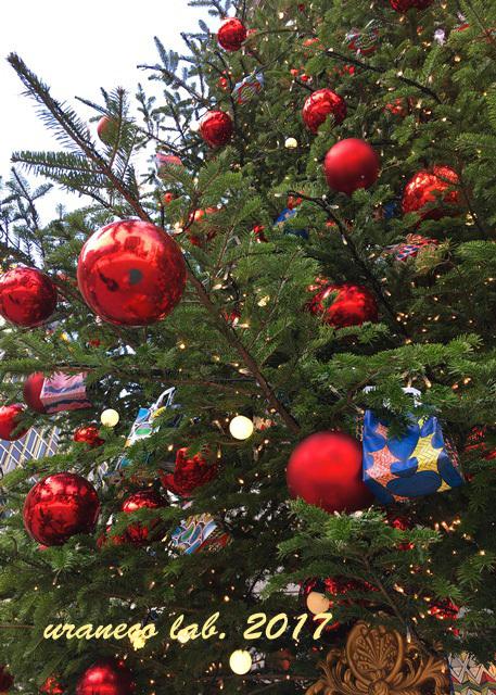 12月11日三越クリスマスツリー