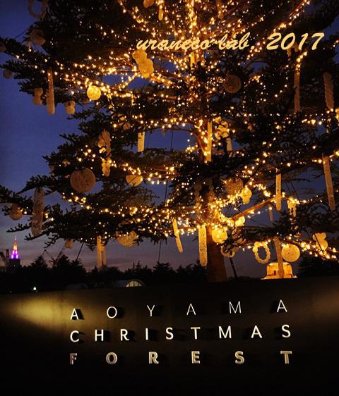 12月25日Aoyama Christmas Forest