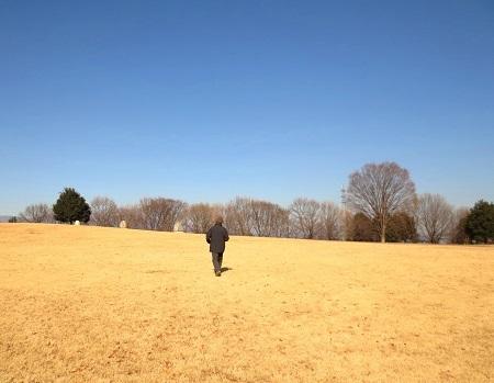 IMG_0952冬の公園