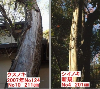2009-2kusushiixx.jpg