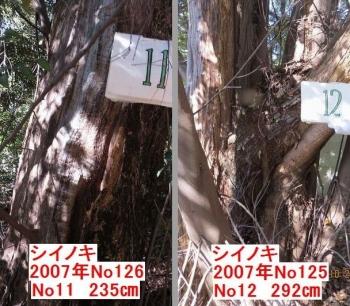 2009-3shiishiixx.jpg