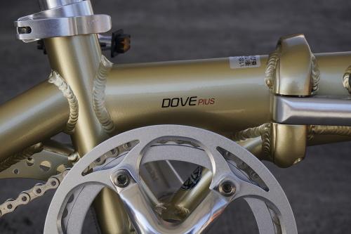 18D_DovePlus3_gold.jpg