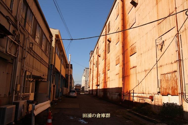 20171103田浦10a