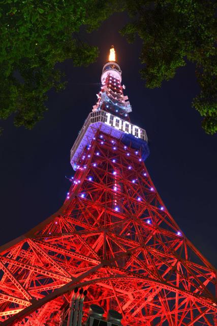 tt-1000-4.jpg