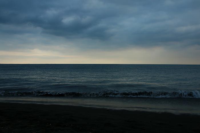 scenery0723アメショ_12