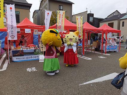 kyarahaku201731.jpg