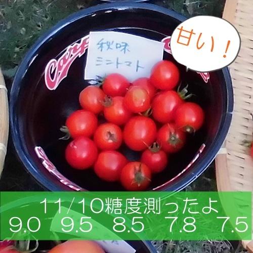 CIMG3672-K.jpg