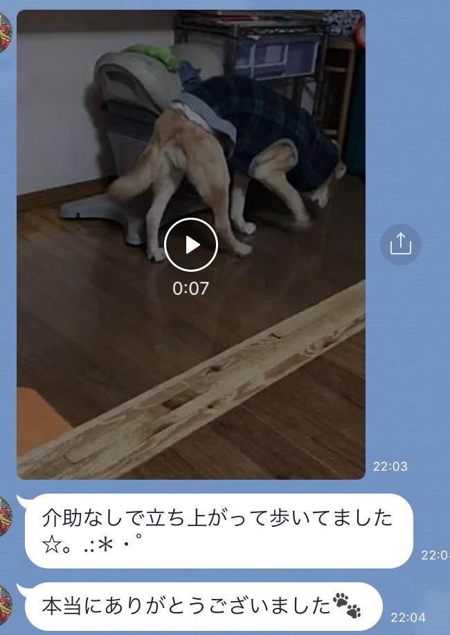 201712270934366f6.jpeg