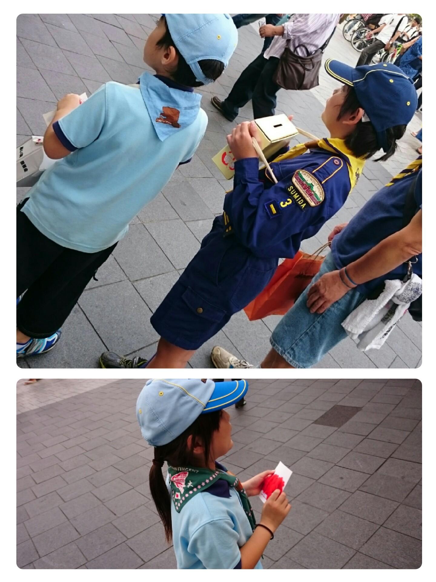 collage-1507505442155.jpg