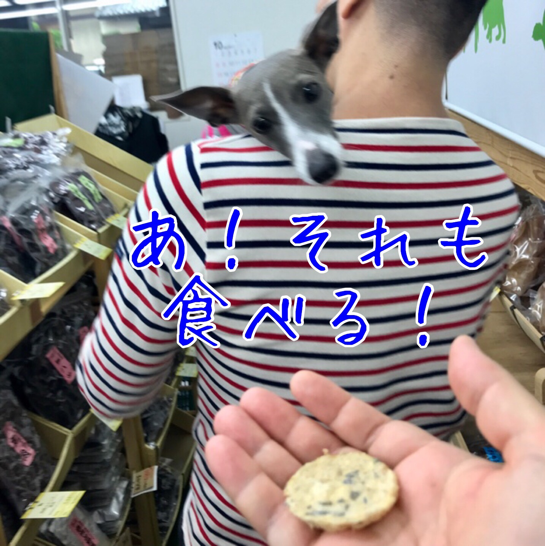 fc2blog_20171101231439d0f.jpg