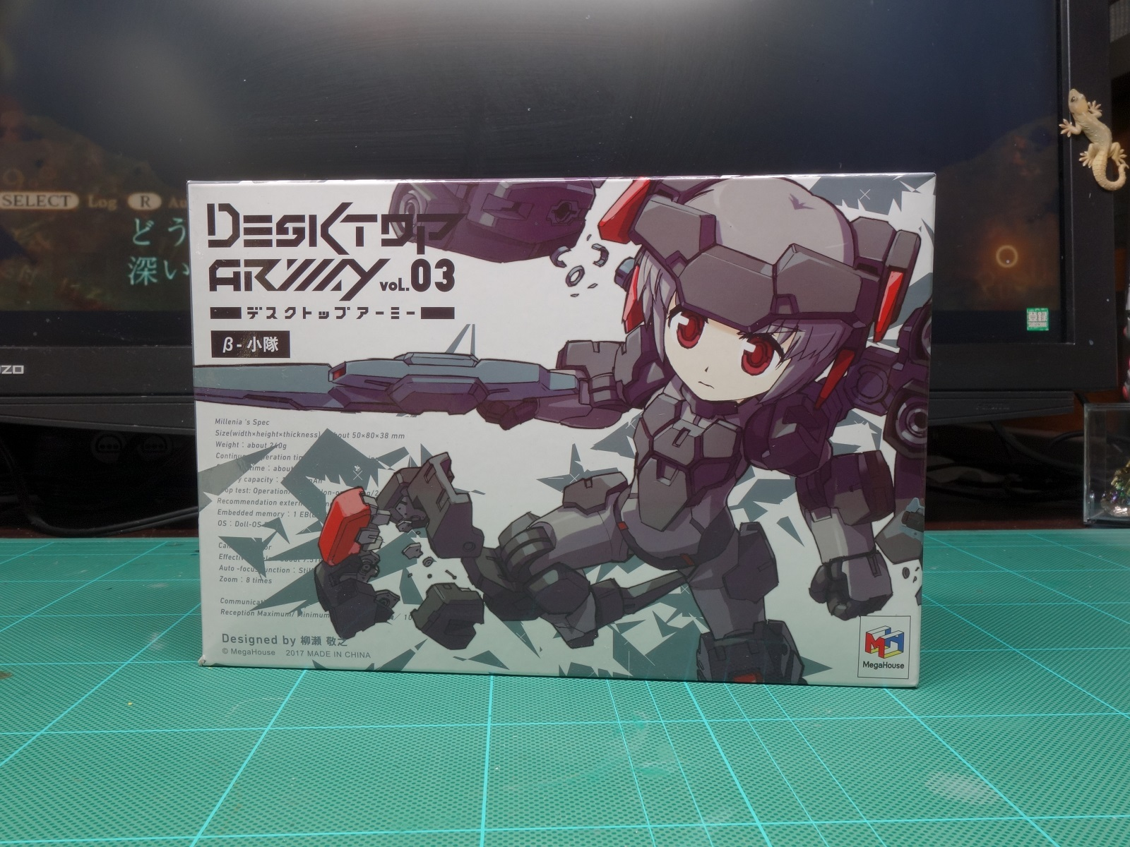 DSC03388up.jpg