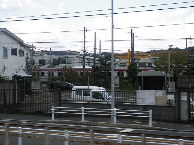 IMGP7131.jpg
