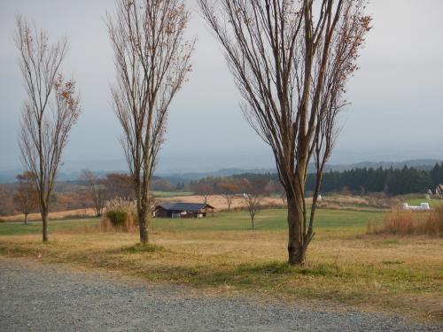 DSCN4919.jpg
