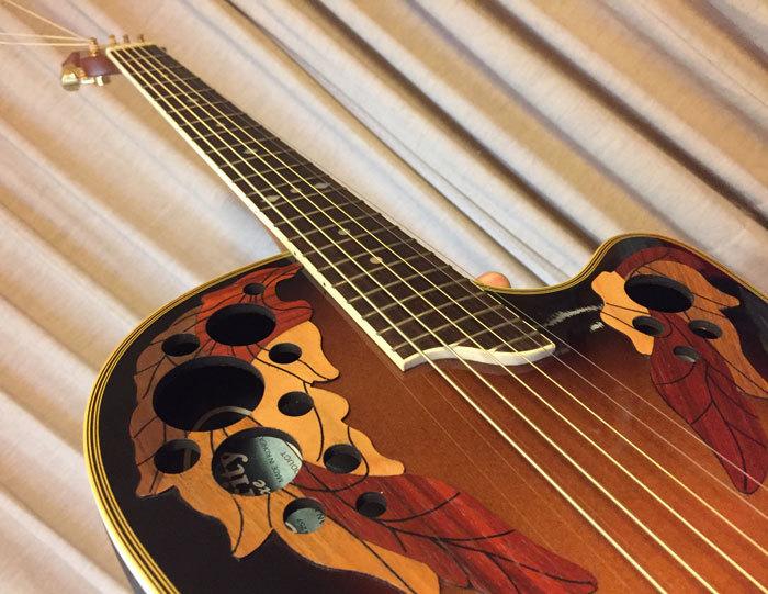 ギター_オベーション