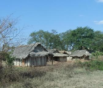 マダガスカルの農村1