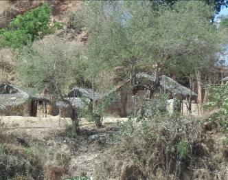 マダガスカルの農村2