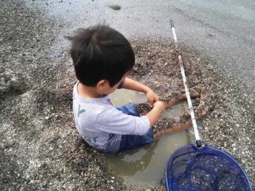 第五回釣り大会葉山2017-09-30 (6)