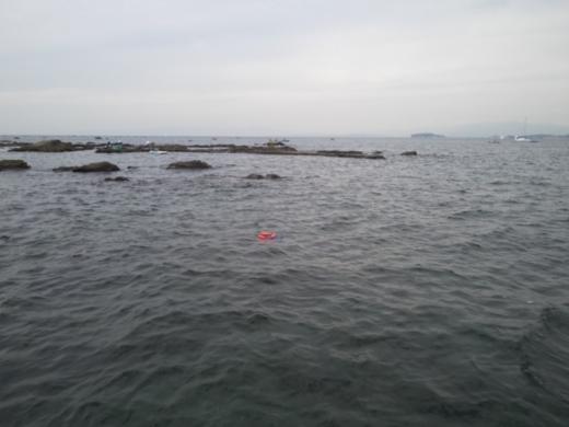 第五回釣り大会葉山2017-09-30 (36)