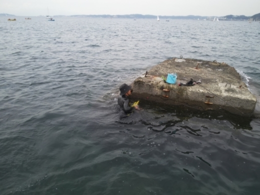 第五回釣り大会葉山2017-09-30 (48)