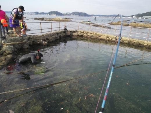 第五回釣り大会葉山2017-09-30 (52)
