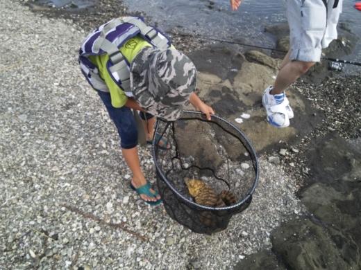 第五回釣り大会葉山 (4)