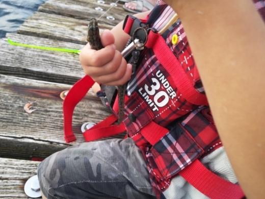 第五回釣り大会葉山2017-09-30 (61)