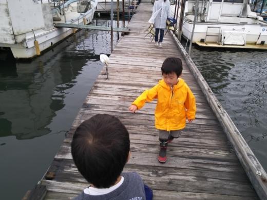 江戸川放水路 (21)