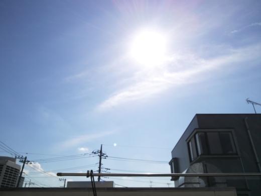 亀小屋 (4)