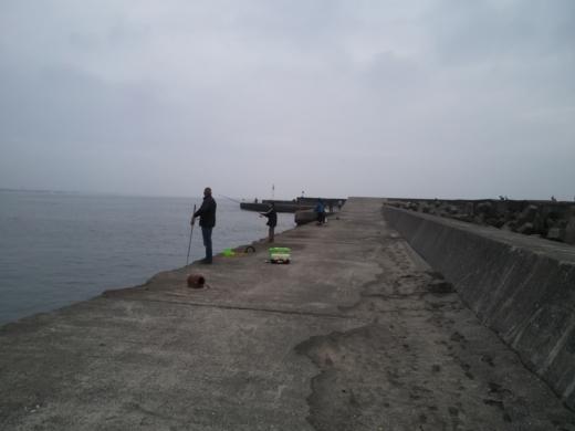 太東港 (20)