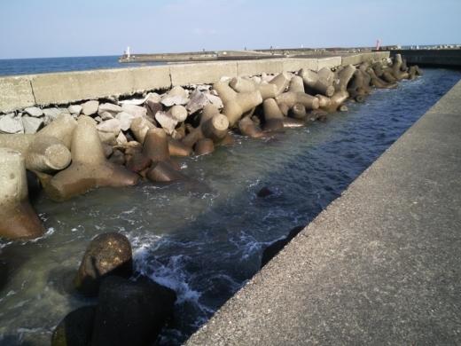 太東港 (32)