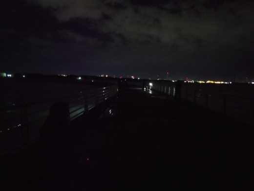 検見川防波堤 (32)