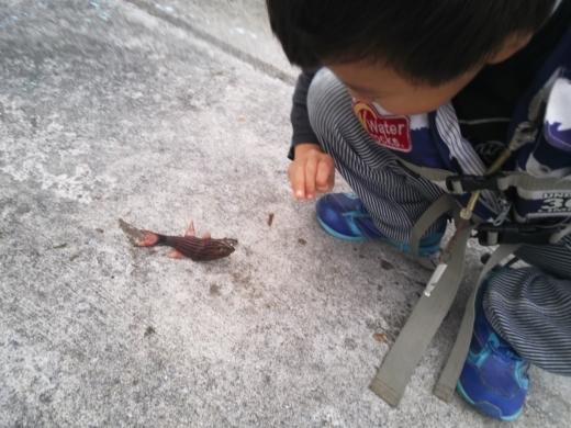 沖縄1日目 (53)