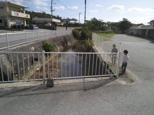 沖縄2日目 (8)