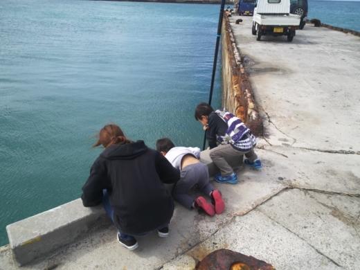 沖縄本部釣り (3)
