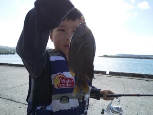 沖縄本部釣り (6)