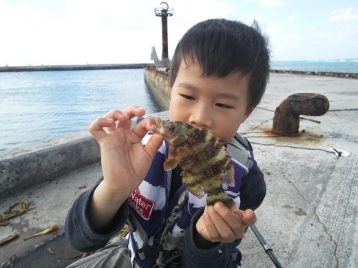 沖縄本部釣り (9)