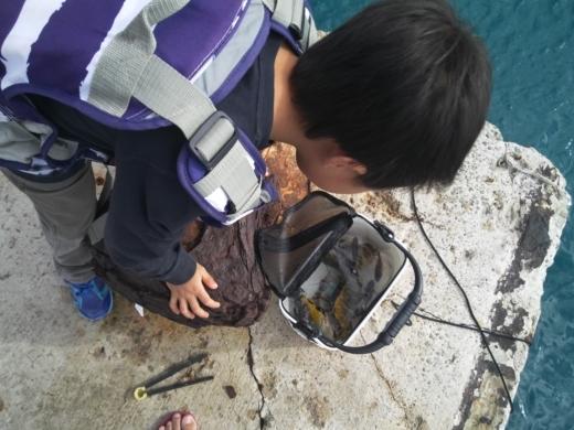 沖縄本部釣り (25)