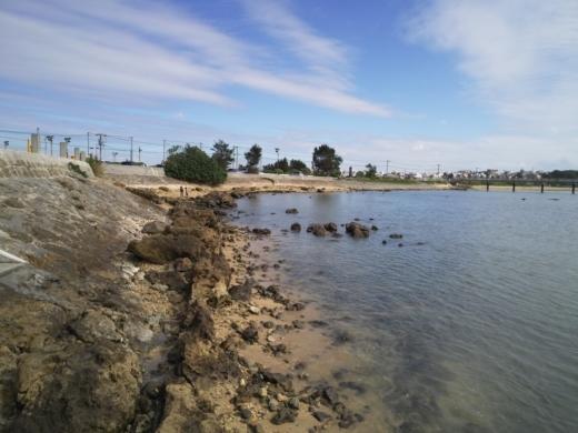 糸満の漁港巡り (6)