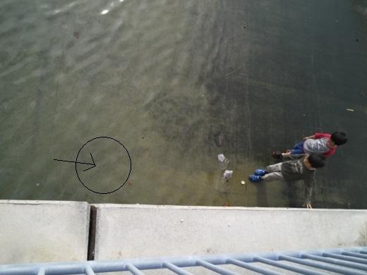 糸満の漁港巡り (9)