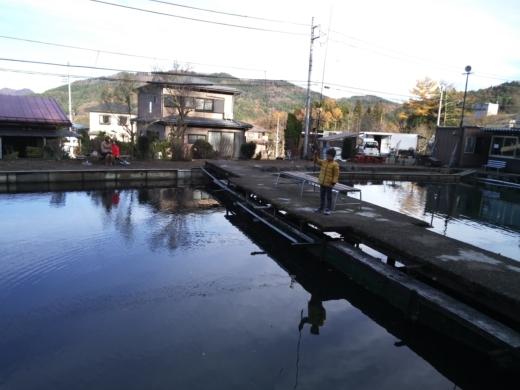 富士見釣り堀① (15)