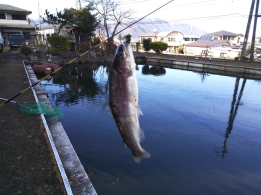 富士見釣り堀① (16)